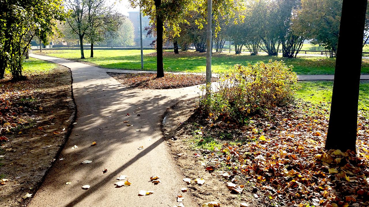Parco cittadino Settimo Milanese